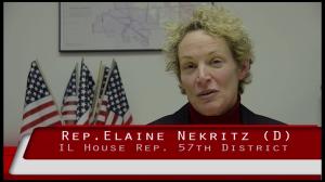 Elaine Nekritz Frame